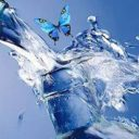 aqua-gesund.online